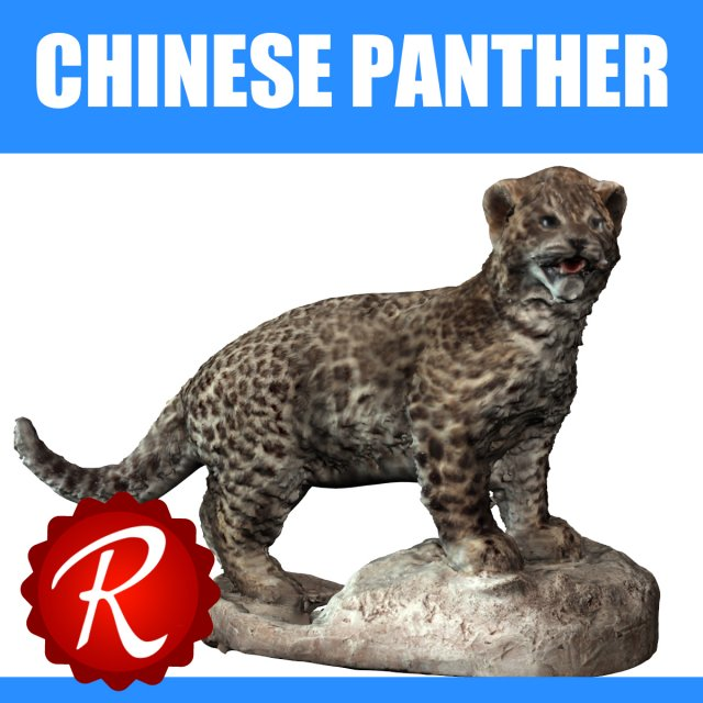 Chinese Panther 3D Model