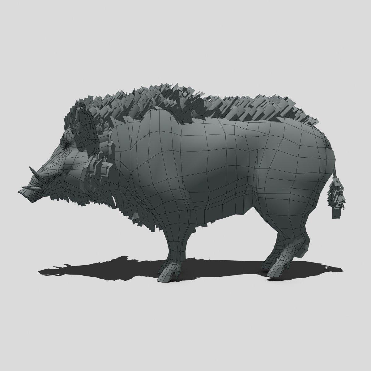 Wild Boar 3D Model in Pig 3DExport