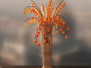 Vase with physalis
