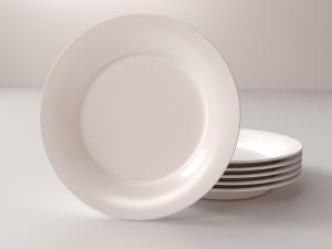 Plate V1