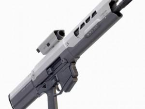 Oblivion Rifle