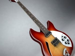 Rickenbacker Guitar 330