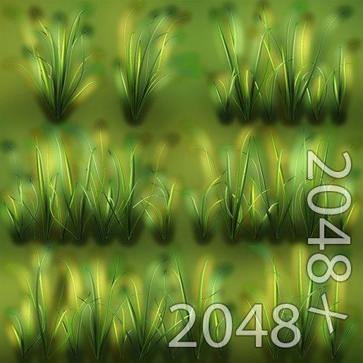 wild grass texture. Wild Grass Texture. Remove Bookmark This Item Wild Grass Texture