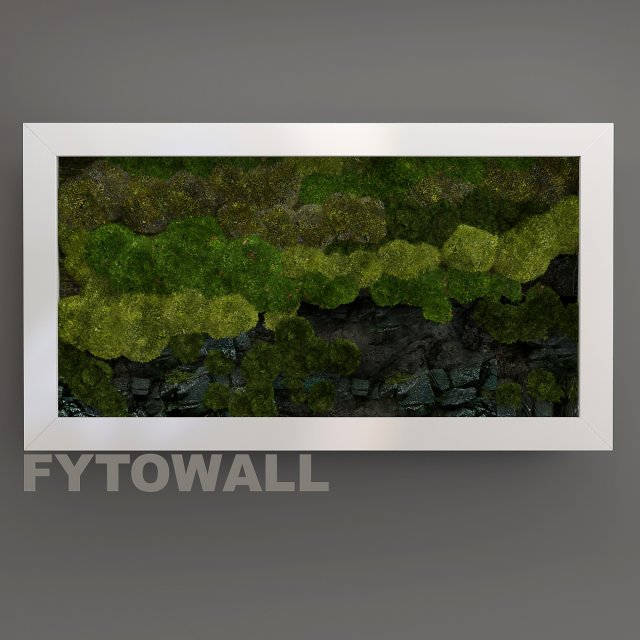 FYTOWALL moss and stone 3D Model