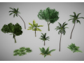 Low poly jungle plants pack