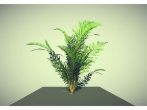 Low poly plant