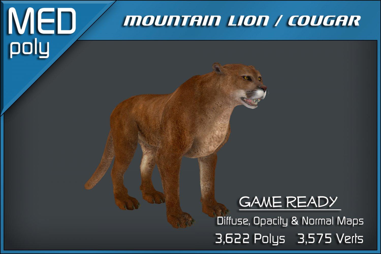 Mountain Lion Cougar 3D Model in Cat 3DExport