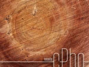TEXTURE  Sawn Wood Grain 01a