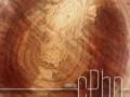 TEXTURE  Sawn Wood Grain 01b