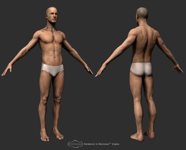 free 3d models stock 3ds max artist downloads humans