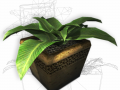 Plant in a pot game ready 3D Model