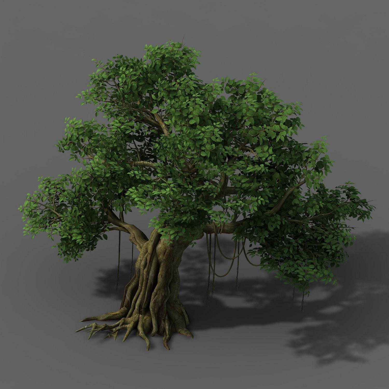 Plant - banyan tree 01 3D Model in Decoration 3DExport