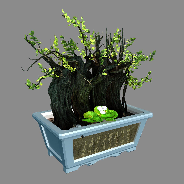 Indoor - potted plants - plants 07 3D-Modell in Baum 3DExport