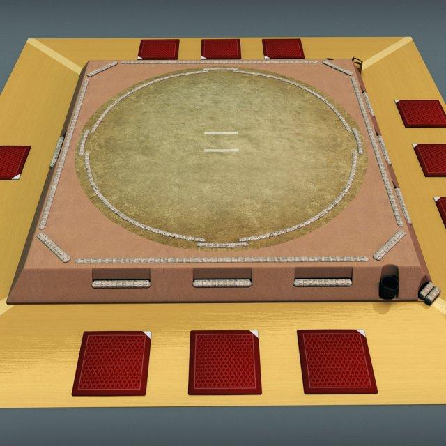 Sumo ring 3D Model