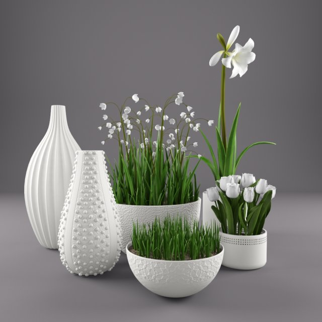 Flowers and vases 3D Model