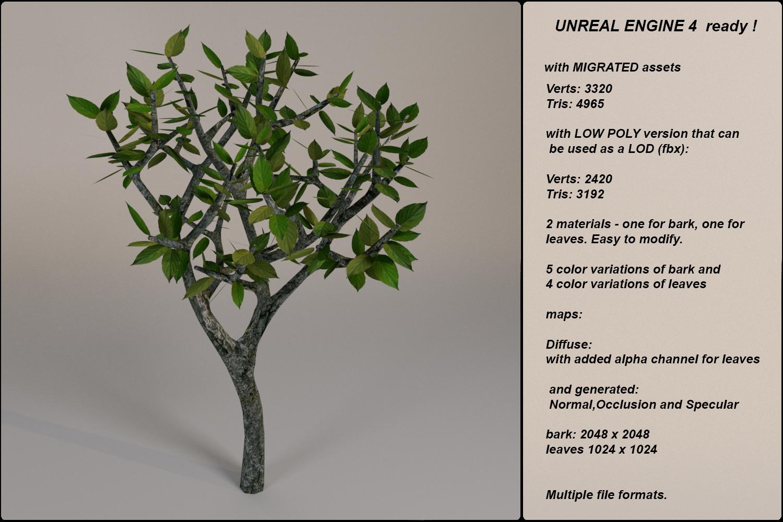 Low Poly Fantasy Game Tree 12 3D Model in Tree 3DExport