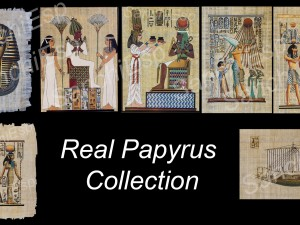 7x REAL PAPYRUS COLLECTION