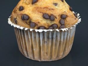 Chocolate chip cupcake