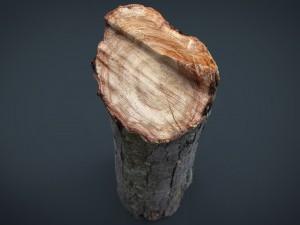 Wood Log 2