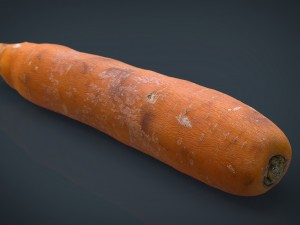 Real Carrot