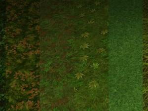 Ground grass tile 10 texture