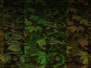 Ground leaf 02