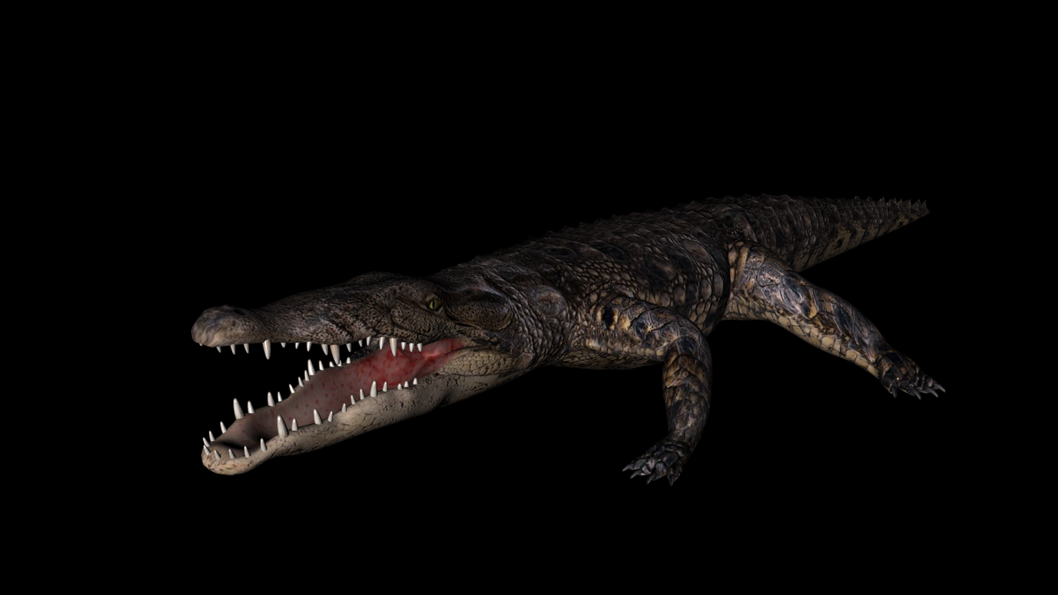 Crocodile rigged 3D Model in Other 3DExport