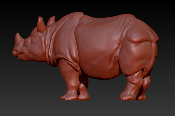 Rhino rhinoceros 3D Model in Amphibians 3DExport