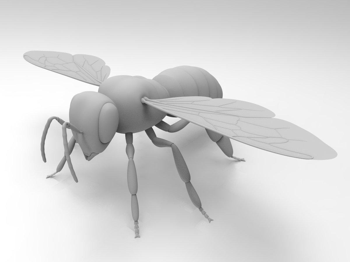 Honey Bee 3D Model in Animals 3DExport
