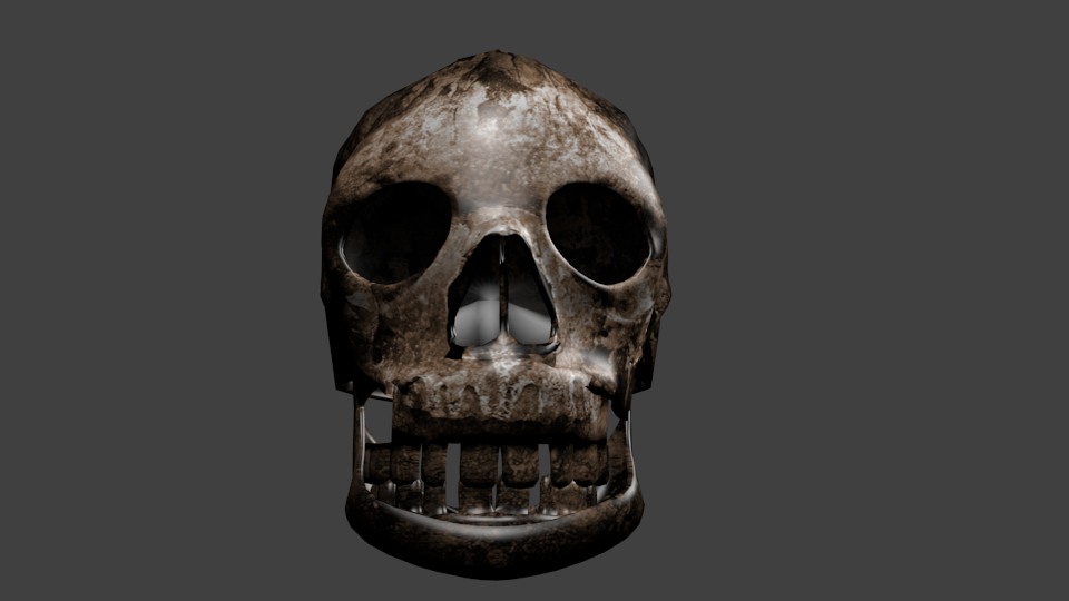 Skull Free 3D Model in Anatomy 3DExport