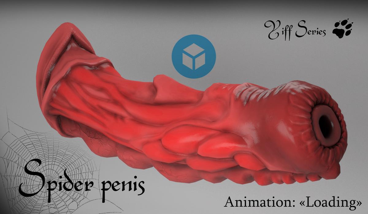 Spider penis Modelo 3D in Anatomía 3DExport