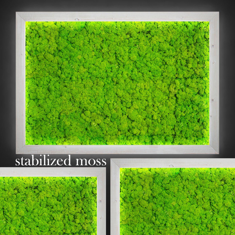 Как сделать мох на полу