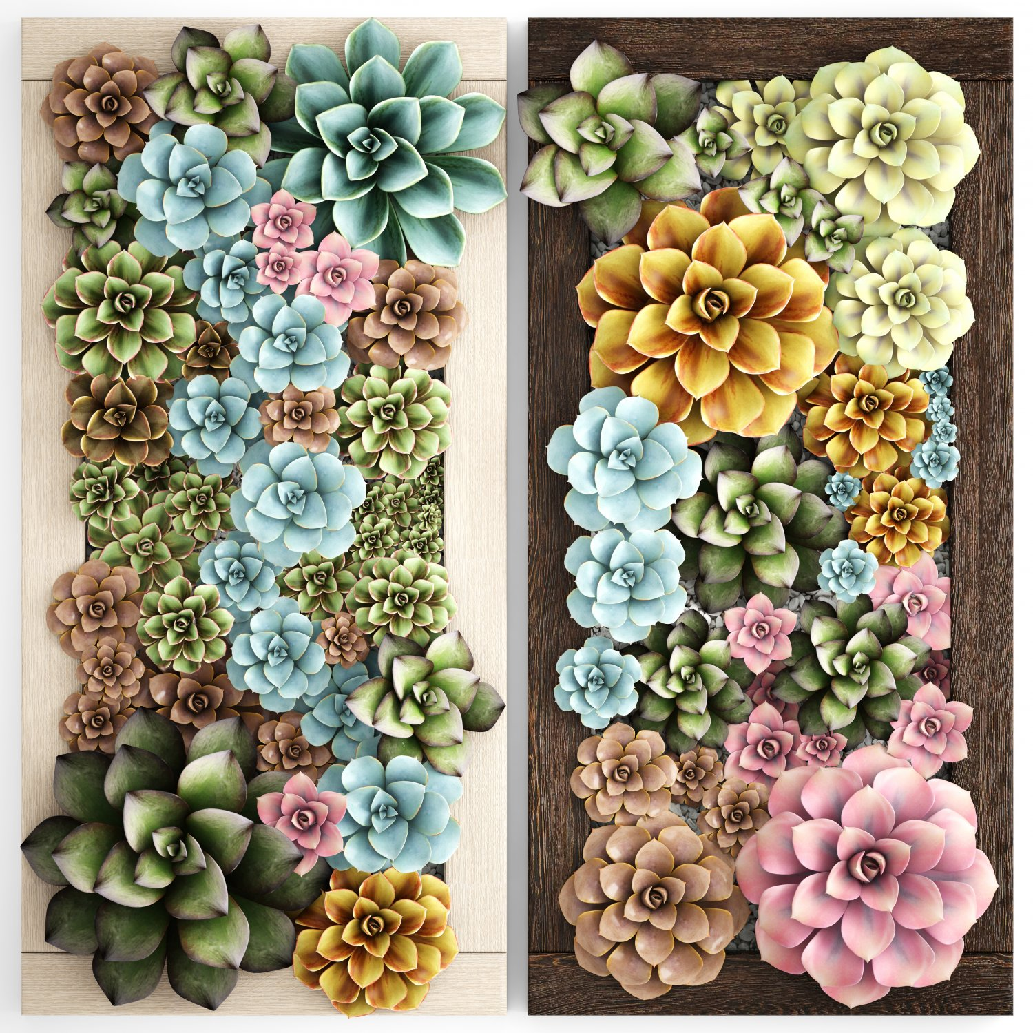 janna do the img entrance dont this don design colourful to at vertical garden up small gardens make t australian or annuals schreier pretty