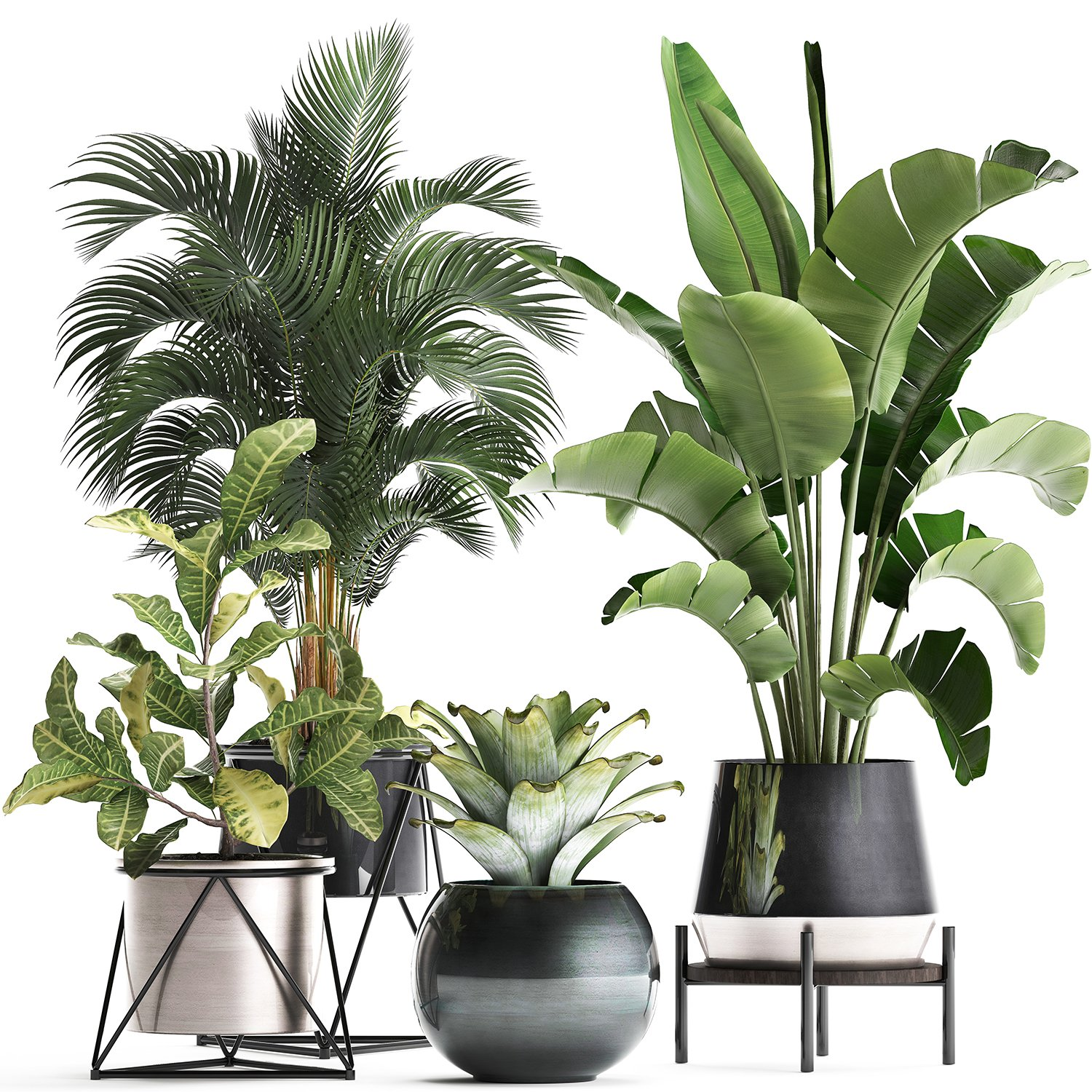 A Collection Of Decorative Plants In Pots For Home 441 3d Model In