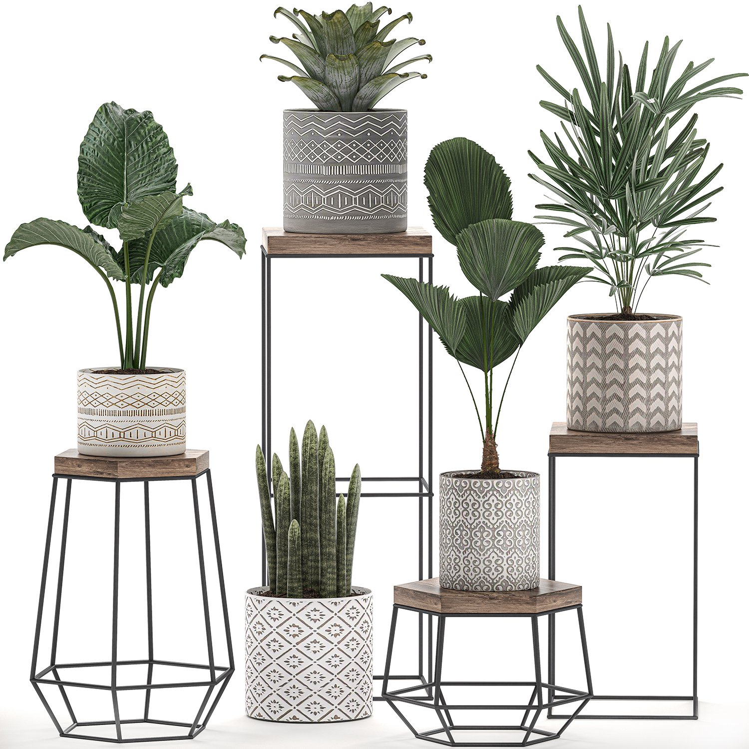 Decorative Plants In Pots On A Stand For The Interior 528 3d Model In