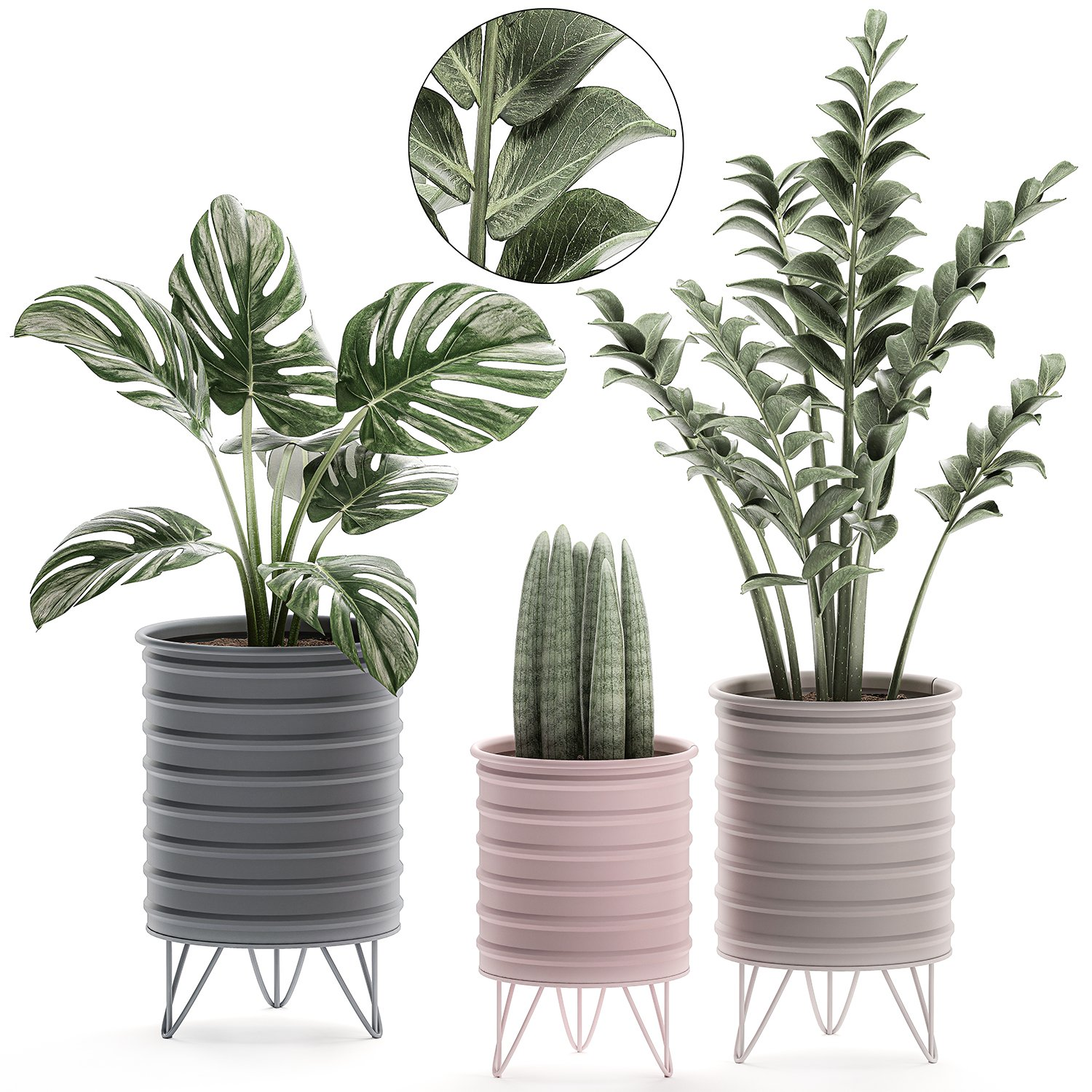 Decorative Plants In Pots On A Stand For The Interior 529 3d Model