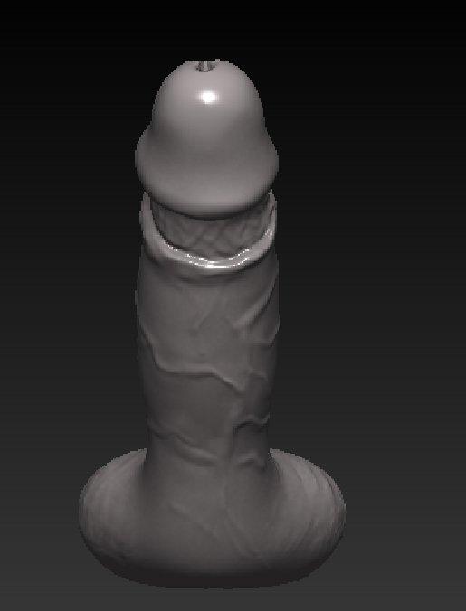 Realistic Penis for 3D Printer Modelo 3D in Anatomía 3DExport