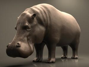 Realistic Hippopotamus High Poly