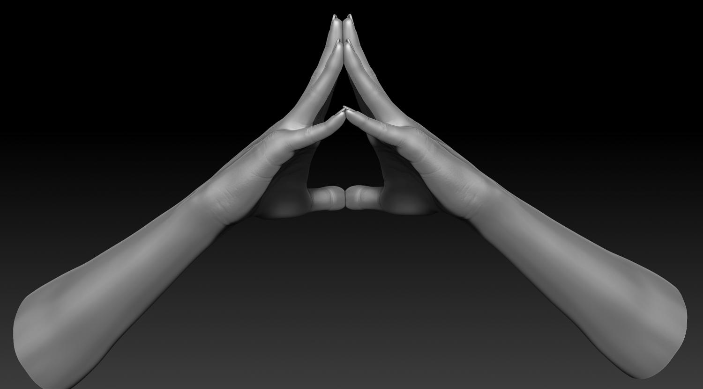 3D Printable Female Hands 20 poses pack 3D Model in Anatomy 3DExport