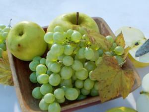 Fruit Bowl Grapes Leaves Apples Cut Damast Knife