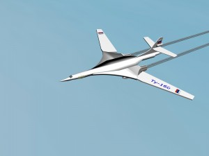 Ty-160 white swan