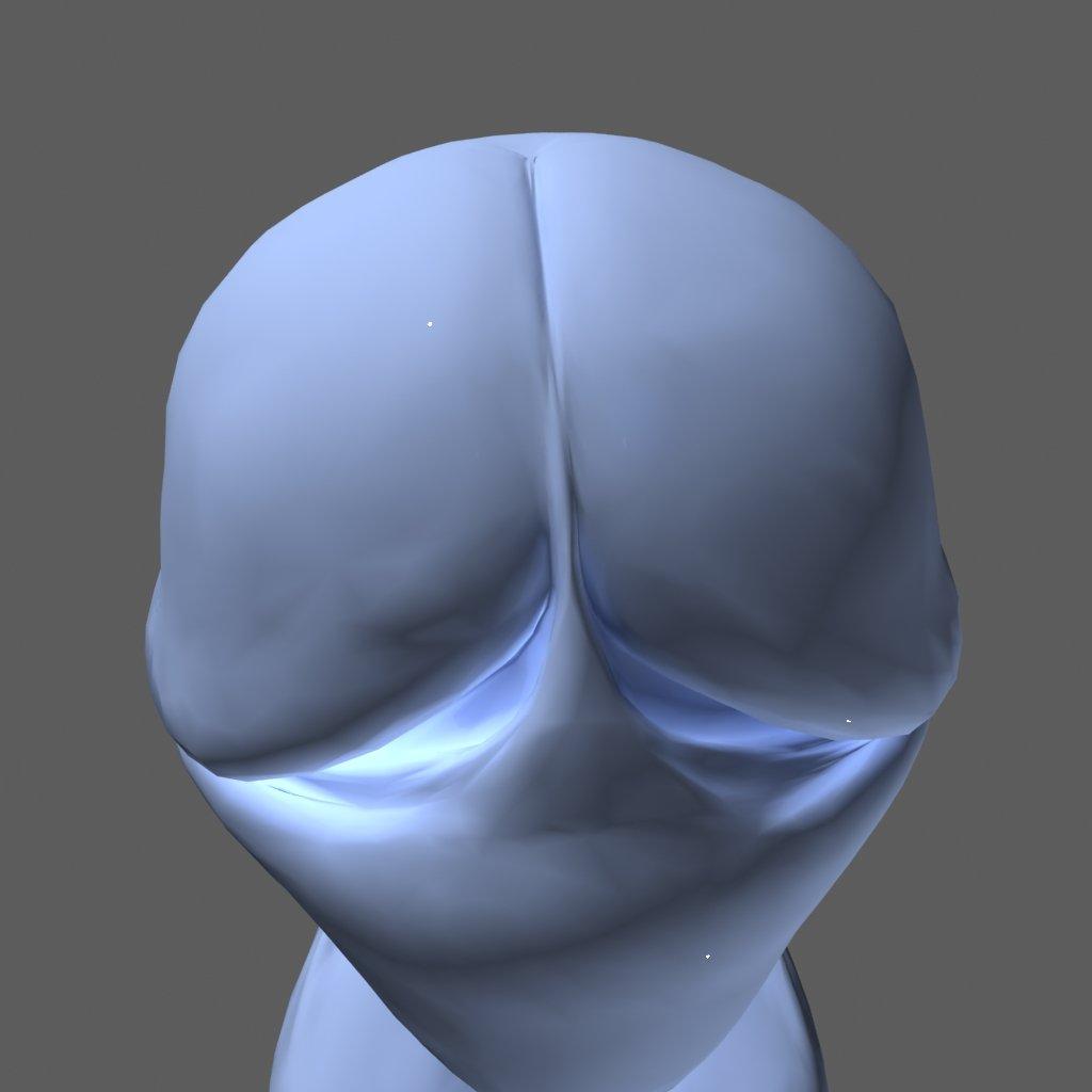 penis 3d-modell in anatomie 3dexport, Badezimmer ideen