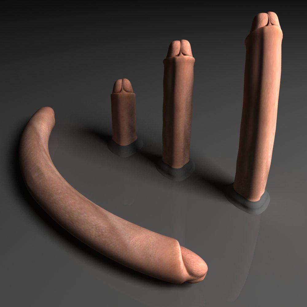 Penis Modelo 3D in Anatomía 3DExport