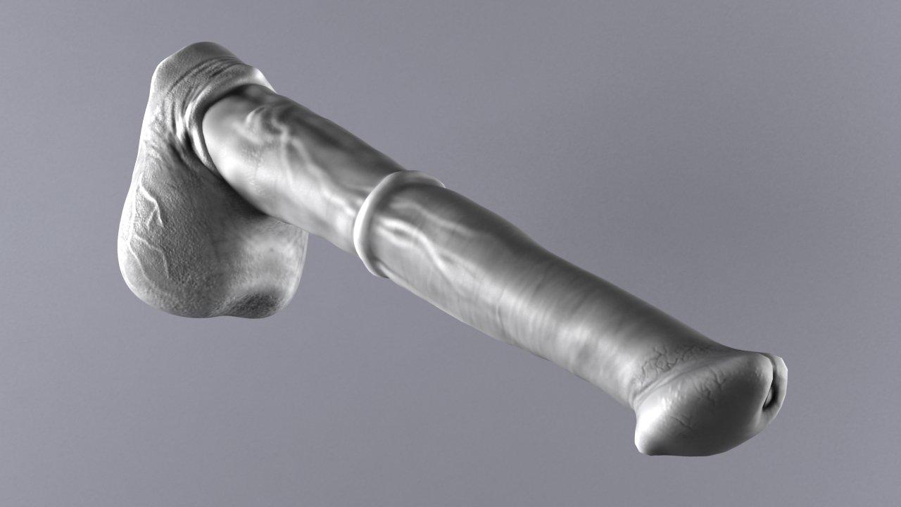 Horse penis Remaster 3D Model