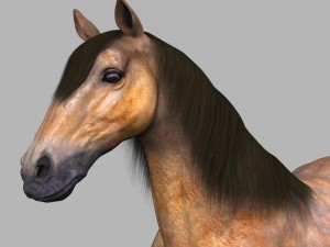 Realistic Muscular Horse
