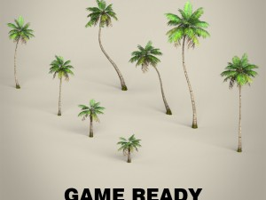 Game Ready Plam Tree Collection