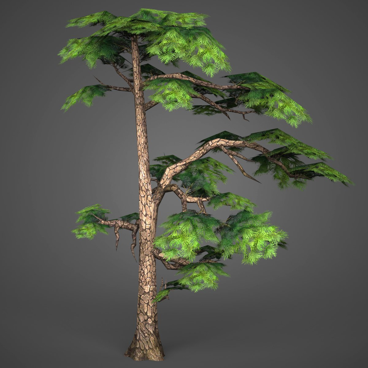 Game Ready Low Poly Tree 15 3D Model in Tree 3DExport