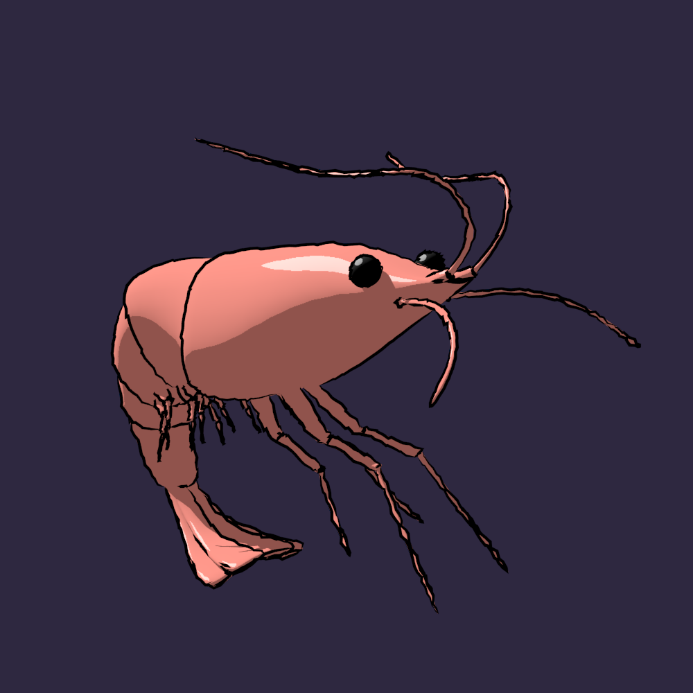 Rigged low poly shrimp for animation in blender 3d model in aquatic rigged low poly shrimp for animation in blender 3d model in aquatic 3dexport malvernweather Images