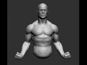 Male Upper Body