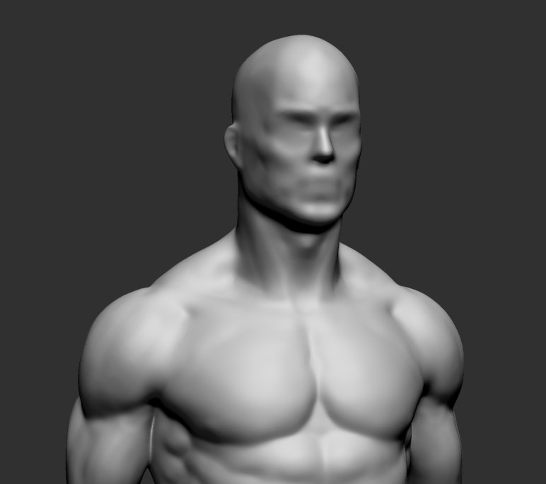 Animated 3D Upper Torso Anatomical Model Male Rotate From
